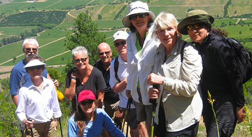 GUIDED BY WINE EXPERTS