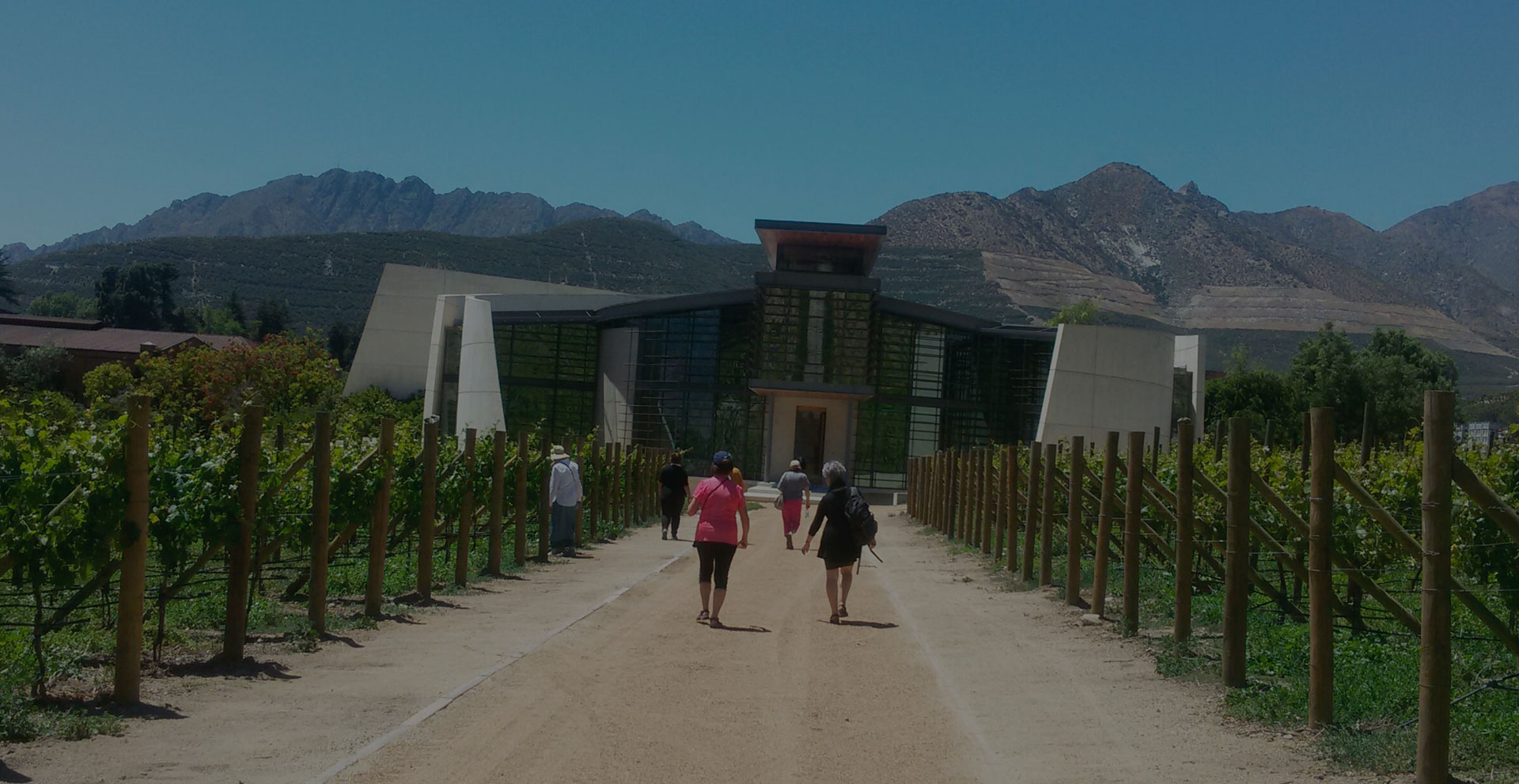 Women wine tours in Chile