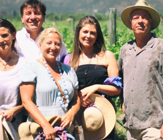 Argentina Experts on Wine Tours